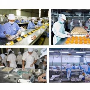 Hệ thống khung lồng túi lọc trong ngành chế biến thực phẩm