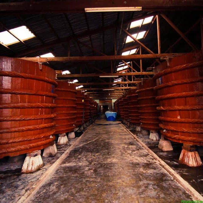 Giải pháp xử lý chất thải cho nhà máy sản xuất nước mắm